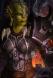 Korgarah K'Rosh Ironhide